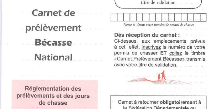 Site de rencontre belge sans abonnement